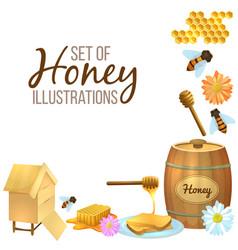 set of honey vector image vector image