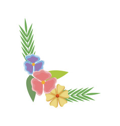 Beautiful floral bunch of flowers leaves vector