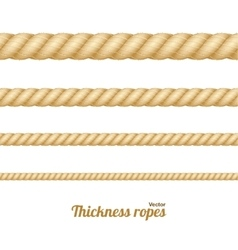 Different Thickness Rope Set vector image