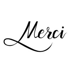 Merci brush hand lettering vector