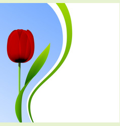 Tulip isolated on blue sky background vector
