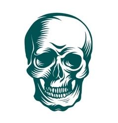 Hand-drawn art of a skull vector image