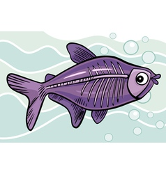 x-ray fish vector image