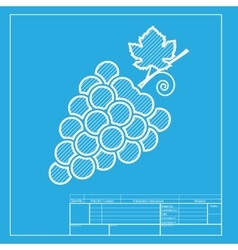 Grapes sign  white section of icon on vector