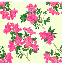 Seamless texture pink rhododendron twig vector
