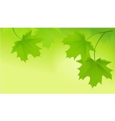 Tree leaves banner vector