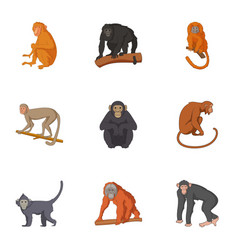 species of chimpanzee icons set cartoon style vector image