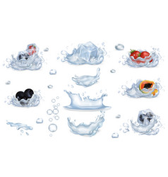 Water splashes and frozen fruits and berries set vector
