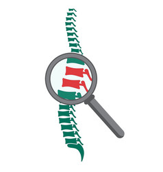 Spine with magnifying glass vector