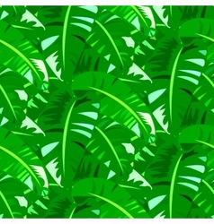 Tropical vintage pattern with big banana leafs vector image