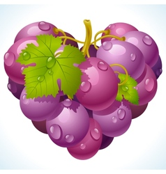 Bunch of grapes in the shape of heart vector image