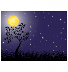 night vector image vector image