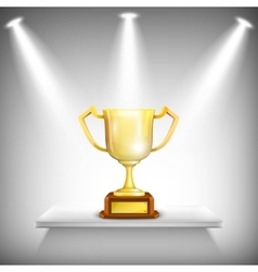 Shelf With Golden Trophy Cup vector image
