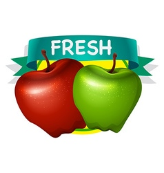 Fresh green and red apple vector