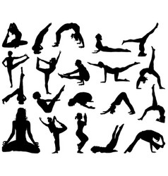 yoga and fitness vector image vector image