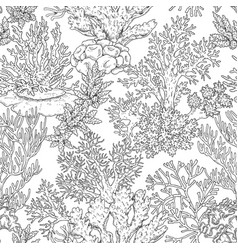 Seamless pattern with corals vector