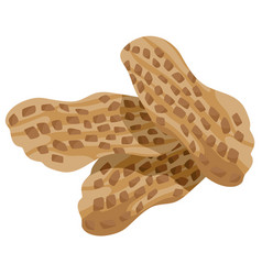 Peanuts food object vector