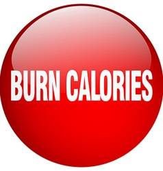 Burn calories red round gel isolated push button vector