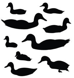Duck silhouette animal clip art vector