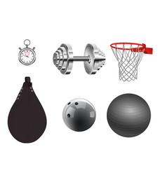 sports equipment on white background vector image vector image