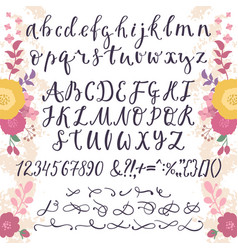 calligraphic font with numbers ampersand vector image