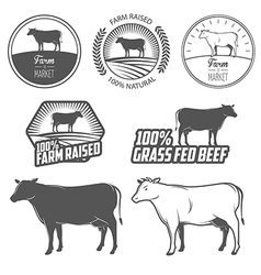 Set of beef labels badges and design elements vector