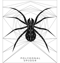 Polygonal spider geometric vector