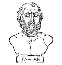 Bust of plato vintage vector