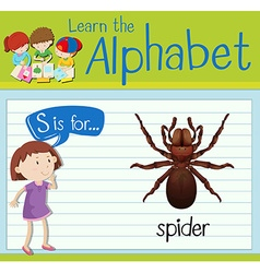 Flashcard alphabet S is for spider vector image vector image