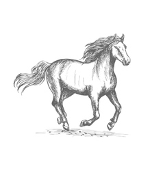 Horse racing sport equine symbol vector