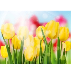 Yellow tulip with bokeh eps 10 vector