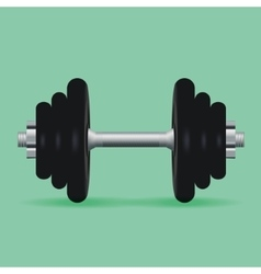 Realistic dumbbell for fitness classes vector image vector image
