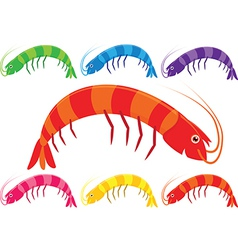Cartoon prawns or shrimp in a variety of bright vector