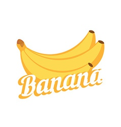 Banana on white background vector image vector image