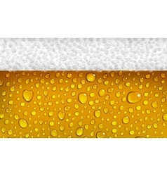 Beer with foam vector image