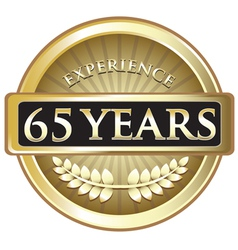 Sixty Five Years Experience Gold vector image vector image