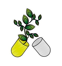 Capsule with leafs isolated icon vector