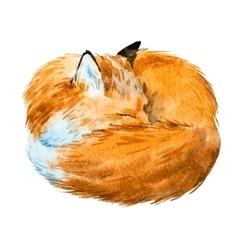 Watercolor sleeping fox vector