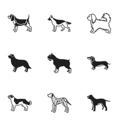 Dog breeds set icons in black style big vector