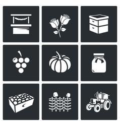 Set of agriculture icons market roses vector
