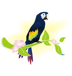 Exotic bird parrot vector