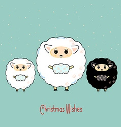 Three sheep vector image