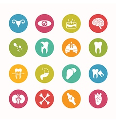 Human anatomy icons set circle series - eps10 vector