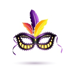 Colored carnival mask vector