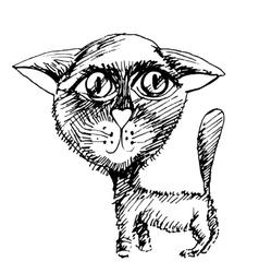 cat chalk vector image vector image