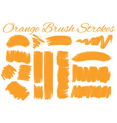 different styles of brush strokes in orange color vector image vector image