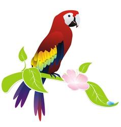Exotic bird parrot vector