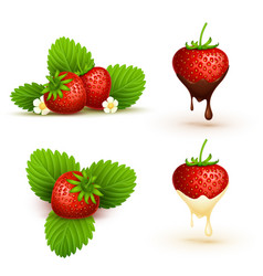 Close up red ripe strawberry with leaves vector