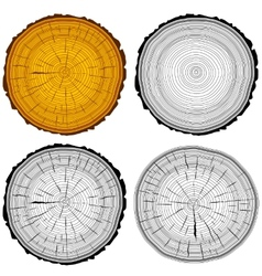 Set tree rings saw cut tree trunk background vector
