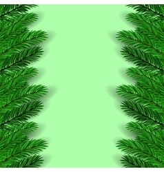 Green Fir Branches vector image vector image